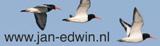 www.jan-edwin.nl